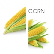 Dodaco - ingredient - corn
