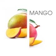 Dodaco - ingredient - mango