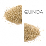 Dodaco - ingredient - quinoa