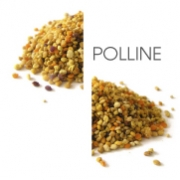 Dodaco - ingrediente - polline