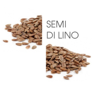 Dodaco - ingrediente - semi di lino